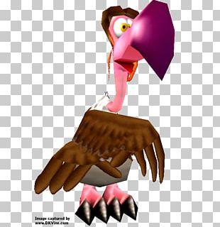 Bird Of Prey Beak Cartoon PNG