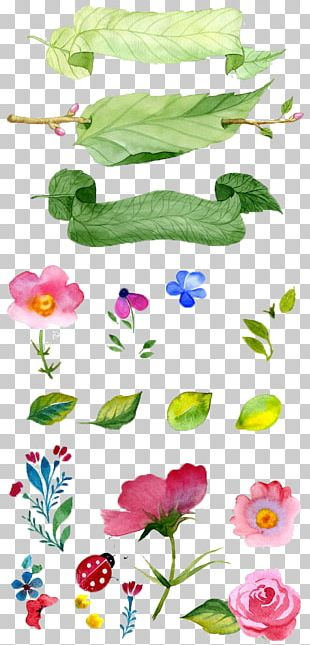 Watercolor Painting Flower Illustration PNG
