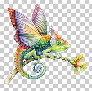 Colored Pencil Art Watercolor Painting Illustrator PNG