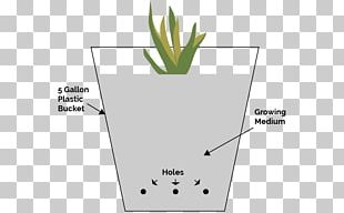 Hydroponics Deep Water Culture Ebb And Flow Growroom Grow Box PNG