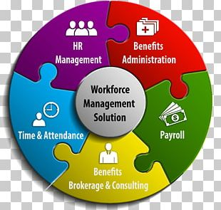 Workforce Management Organization Human Resource Consulting PNG