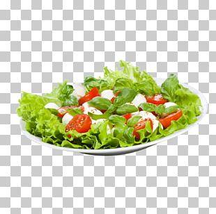 Vinaigrette Pizza Salad Vinegar Chicken Meat PNG