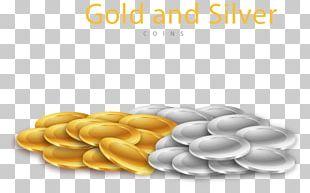 Silver Coin Euclidean Gold Coin PNG