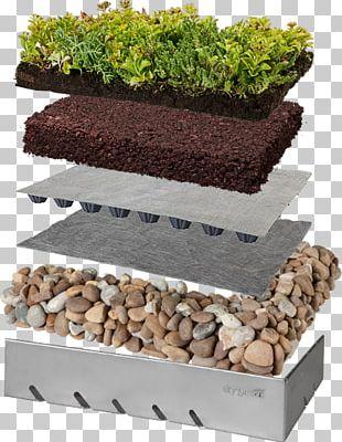 Green Roof Roof Garden Building PNG