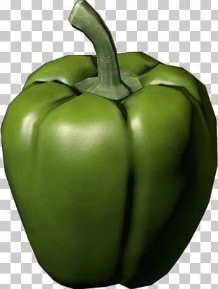 Bell Pepper Chili Pepper Vegetable Avocado PNG