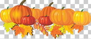 Autumn Free Content Harvest Festival PNG
