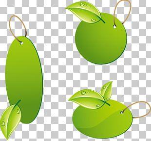 Kagiso Green Office Week Environmentally Friendly PNG