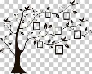 Family Tree Partition Wall Adhesive Genealogy PNG