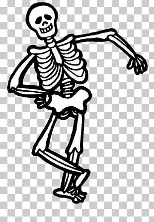 Halloween Human Skeleton PNG