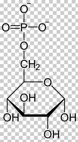 Glucose Molecule Organic Compound Organic Chemistry Fructose PNG