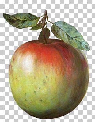 The Treachery Of S Golconda This Is Not An Apple The Son Of Man Blue Cinema PNG