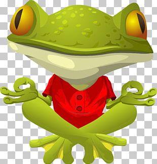 Frog Yoga PNG
