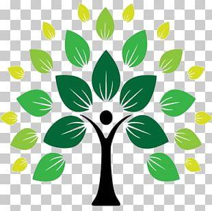 Tree Of Life Symbol Logo PNG