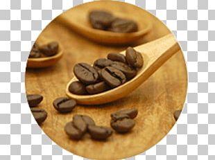 Jamaican Blue Mountain Coffee Espresso Coffee Bean Brewed Coffee PNG