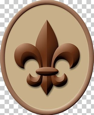 Boy Scout Handbook Ranks In The Boy Scouts Of America Scouting Eagle Scout PNG