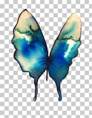 Butterfly Watercolor Painting Drawing Turquoise PNG