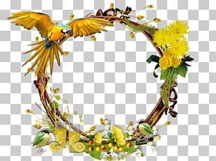 Floral Design Paper Health La Misionerita PNG