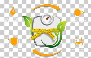 Human Body Weight Weight Loss Measuring Scales Body Mass Index Body Fat Percentage PNG