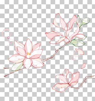 Flower Line PNG