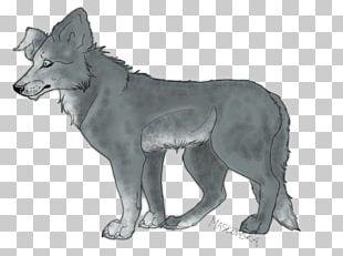Gray Wolf Coyote Jackal Fauna Fur PNG