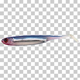 Sardine Spoon Lure Oily Fish Herring Behr PNG