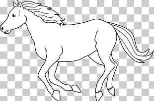 Tennessee Walking Horse Black And White Free Content PNG