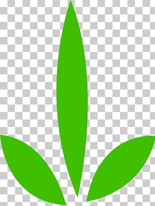 Leaf Computer Icons PNG