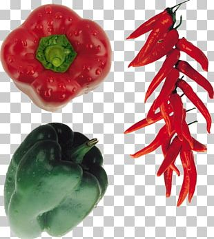 Bird's Eye Chili Cayenne Pepper Bell Pepper Chili Pepper Vegetable PNG
