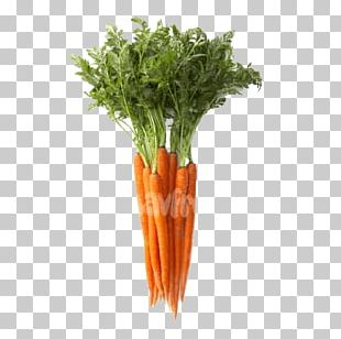 Vegetable Fruit Carrot Food Bento PNG