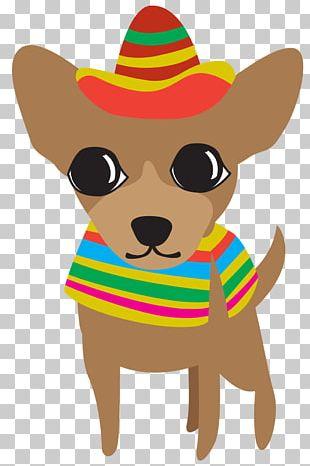 Chihuahua Puppy Cinco De Mayo PNG