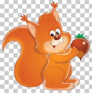 Drawing Tree Squirrels Acorn Nucule Animaatio PNG