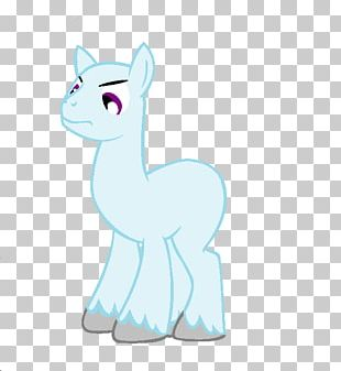 Whiskers Cat Horse Pony Dog PNG