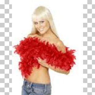 Feather Boa Costume Party PNG