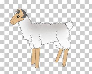 Sheep Cattle Goat Horse Mammal PNG