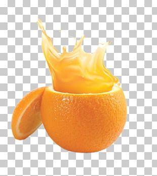 Orange Juice Mandarin Orange Citrus Xd7 Sinensis PNG
