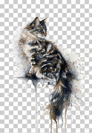 Cat Kitten Watercolor Painting Drawing PNG