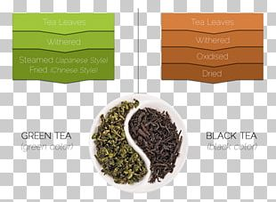 Green Tea Tea Leaf Grading Oolong White Tea PNG
