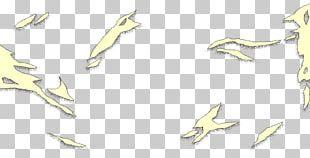Marine Mammal Sketch Product Design Line Art PNG