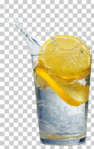Orange Drink Fizzy Drinks Gin And Tonic Lemon Orange Juice PNG