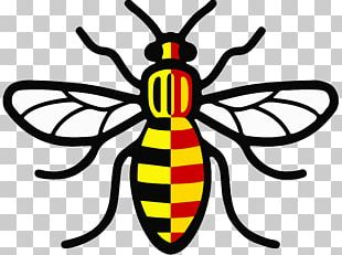 Worker Bee Symbols Of Manchester Manchester Arena Decal PNG