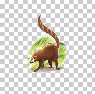 Squirrel Cartoon Comics Drawing PNG