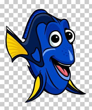 Fish School Drawing Cartoon PNG