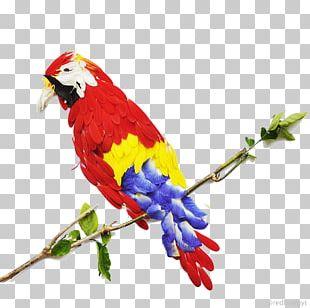 Bird Flower Petal Red Leaf PNG