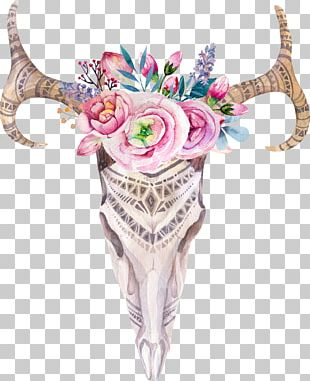 Boho-chic Skull Watercolor Painting Photography PNG
