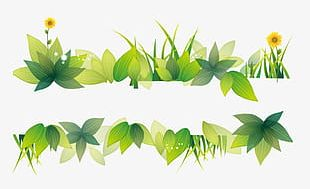 Beautiful Clear Green Grass PNG