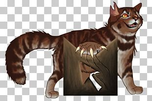 Whiskers Tiger Cat Fur PNG