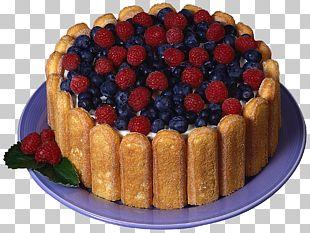 Charlotte Chocolate Cake Ladyfinger Christmas Cake PNG