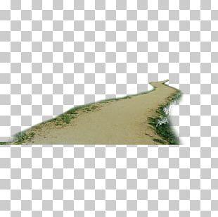 Dirt Road PNG
