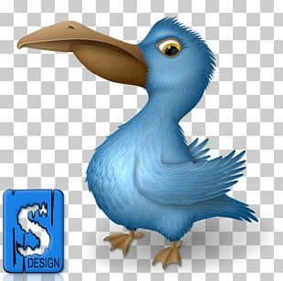 Bird Computer Icons Pelican PNG
