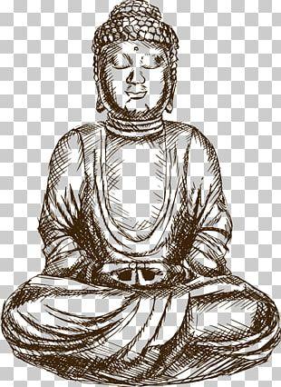 Gautama Buddha Drawing Buddhism Sketch PNG